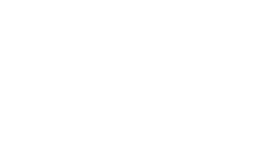Caretaker period has commenced